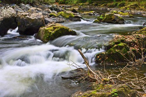 The-Stream