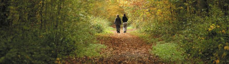 Marquee-women-walking-woods